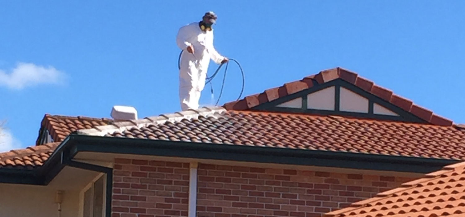 roof cleaning Brisbane