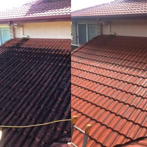 before and after photo of roof cleaning